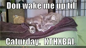 Don wake me up til  Caturday.  KTHXBAI.