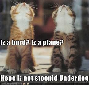Iz a burd? Iz a plane?  Hope iz not stoopid Underdog