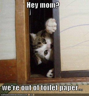 Hey mom?  we're out of toilet paper...