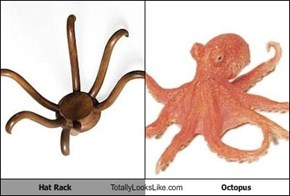 Hat Rack Totally Looks Like Octopus