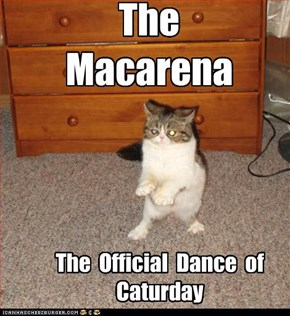 The  Macarena