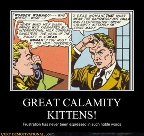 GREAT CALAMITY KITTENS!
