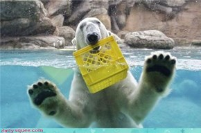 Acting Like Animals: I Found the Bucket!