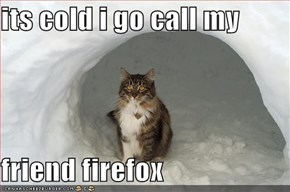 its cold i go call my   friend firefox