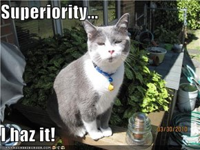 Superiority...  I haz it!