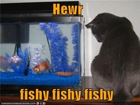 Hewr  fishy fishy fishy