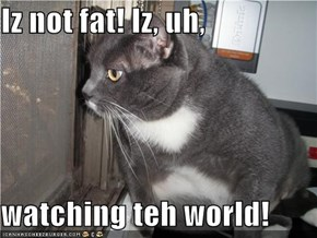 Iz not fat! Iz, uh,  watching teh world!