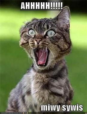 AHHHHH!!!!!  miwy sywis