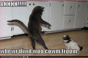 AHHHH!!!!!  whewr diwd woo cowm froom
