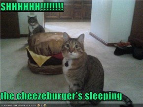 SHHHHHH!!!!!!!!  the cheezeburger's sleeping