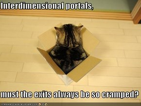 Interdimensional portals,  must the exits always be so cramped?