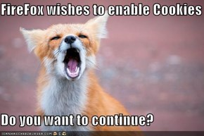 FireFox wishes to enable Cookies  Do you want to continue?