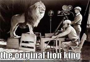 the original lion king