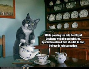 While pouring tea into her Royal Doultons with the periwinkles, Hyacinth realised that she did, in fact, believe in reincarnation.