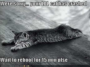Were sorry... your LOL cat has crashed  Wait to reboot for 15 min plse