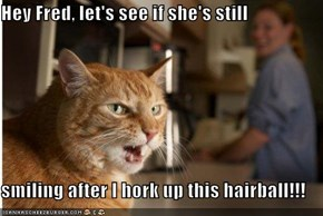 Hey Fred, let's see if she's still   smiling after I hork up this hairball!!!