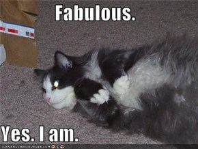 Fabulous.  Yes. I am.