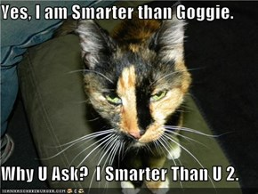 Yes, I am Smarter than Goggie.  Why U Ask?  I Smarter Than U 2.