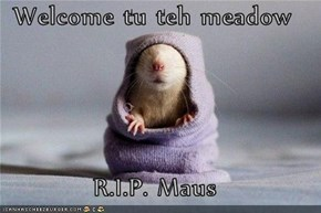 Welcome tu teh meadow  R.I.P. Maus