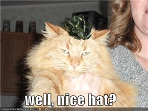 well, nice hat?
