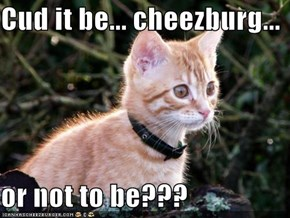 Cud it be... cheezburg...  or not to be???