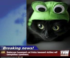 Breaking news! -  Undercovr basement cat trickz innosent victimz wif   conspishus cyootness.
