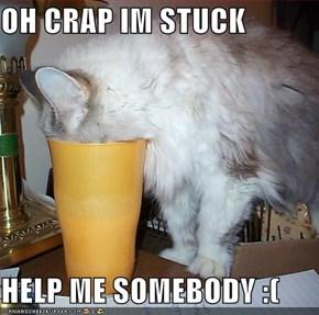 OH CRAP IM STUCK   HELP ME SOMEBODY :(