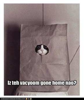 Iz teh vacyoom gone home nao?