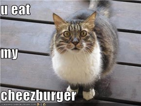 u eat my cheezburger