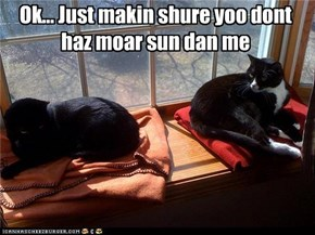 Ok... Just makin shure yoo dont haz moar sun dan me
