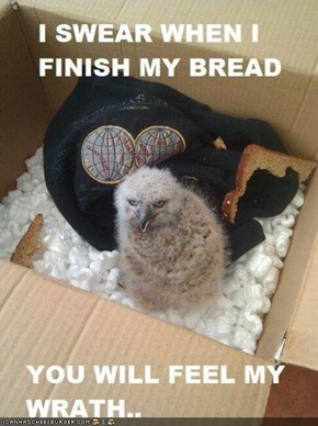 But First, The Bread!