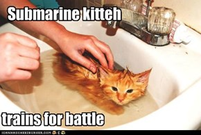 Submarine kitteh