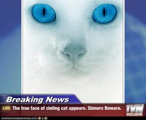 Breaking News - The true face of cieling cat appears. Sinners Beware.