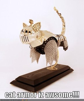 cat armor iz awsome!!!