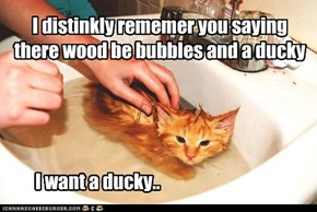 I distinkly rememer you saying there wood be bubbles and a ducky