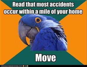 Accident Parrot