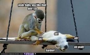Mmmm...hot monkey lovin'!