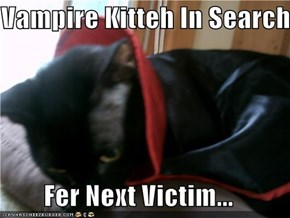 Vampire Kitteh In Search  Fer Next Victim...