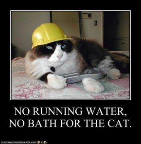 NO RUNNING WATER,  NO BATH FOR THE CAT.