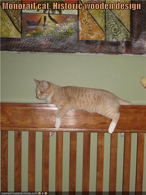 Monorail cat. Historic wooden design