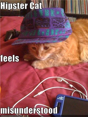 Hipster Cat feels misunderstood