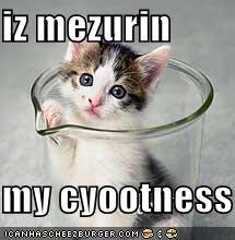 iz mezurin  my cyootness