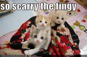 so scarry the fingy