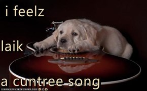 i feelz laik a cuntree song