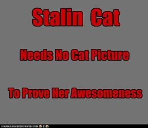 Stalin Cat