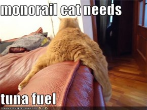 monorail cat needs   tuna fuel