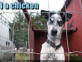 I a chicken