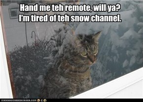 Hand me teh remote, will ya? I'm tired of teh snow channel.