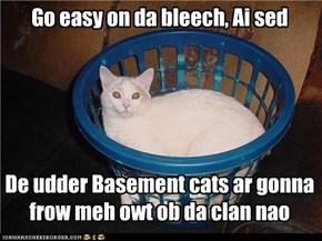 Go easy on da bleech, Ai sed