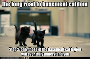 the long road to basement catdom